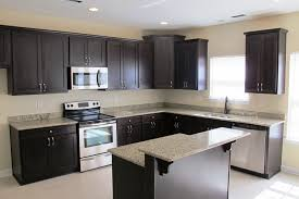 Dark Cabinet Kitchen Designs by Kitchen Cabinets Black Retro Espresso With White Countertops Dark