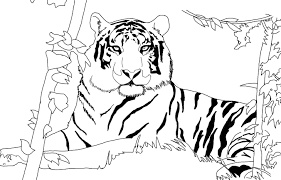 lion face coloring page elegant happy face coloring pages angry