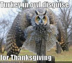 Memes Thanksgiving - 23 memes made just for thanksgiving smosh