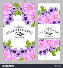 Beautiful Invitation Card Wildflowers Vintage Invitation Card Beautiful Flowers Stock Vector