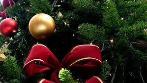 Christmas Tree Shopping Tips - georgetown county sheriff offers tips to stay safe this holiday