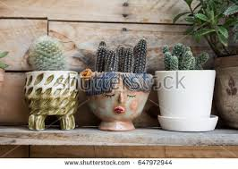 Vase Face Vase Face Stock Images Royalty Free Images U0026 Vectors Shutterstock