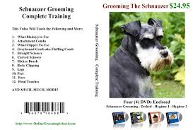 schnauzer hair cut step by step grooming your schnauzer part 8 clipper cutting the leg schnauzer