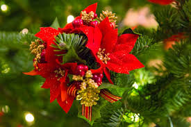 poinsettia christmas decoration free stock photo public domain