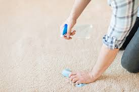 Area Rug Cleaning Portland by Homemade Carpet Cleaning Solution Enlighten Me