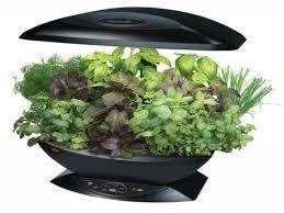 kitchen herb garden indoor herb garden containers indoor herb