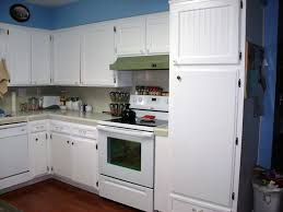 Kitchen Cabinets Door Replacement Kitchen Cabinet Door Replacement Lowes Roselawnlutheran