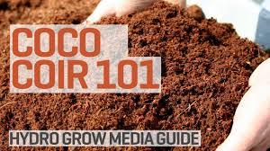 Fiber Soil by Coco Coir Grow Media Hydroponics 101 Youtube