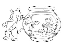 coloriage bb amazing imprimer les pokemon ex coloriage with