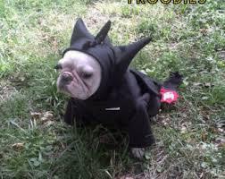 Halloween Costumes Bulldogs Costume Dog Hoodies French Bulldog Boston Froodieshoodies