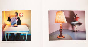 pleasures and terrors of domestic comfort buy descriptive essay the lodges of colorado springs pleasures