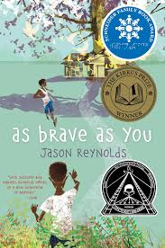 As Blind As A Bat Meaning As Brave As You Book By Jason Reynolds Official Publisher Page