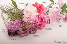 peonies bouquet pink bouquet with peonies and lilies flower muse