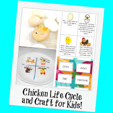 chicken life cycle and a paper plate craft for kids wikki stix