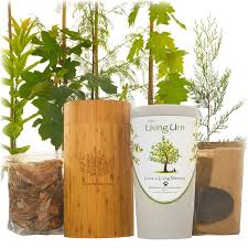 living urn system only use with your own tree plant or flowers