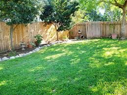 Privacy Ideas For Backyards by Exterior Cool Backyard Design Ideas With Green Grass Flooring