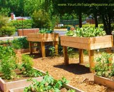 Raised Garden Bed Designs Garden Ponds 6 Best Designs For Limited Garden Space U2013 Wilson
