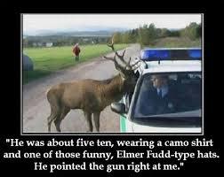 Oh Deer Meme - oh deer nobody move