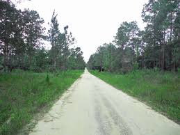 Ocala National Forest Map Camping In Ocala National Forest Florida Rambler