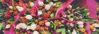 wholesale flowers online wholesale flowers plants next day wholesale flower delivery