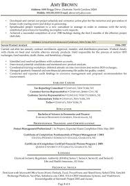 Sample Resume Of Business Analyst by Business Financial Analyst Resume Example Resume Templates Auto