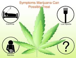Medical Power Of Attorney Australia by Medical Marijuana Policy In The United States Hopes Huntington U0027s