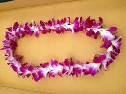 Graduation Leis Hawaiian Bombay Orchid Lei Graduation Lei In Santa Barbara Ca