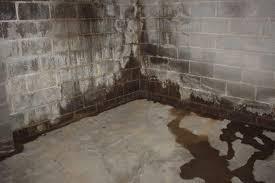 backyard water proofing basement waterproofing costs standard1