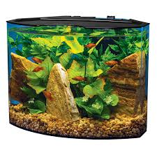 amazon com tetra 29003 crescent aquarium kit 5 gallon