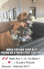 Stupid Friends Meme - when you and your best friend do stupid stufftogether rate this