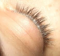 Does Vaseline Help Eyelashes Grow Marie U0027s Powder Room Update On Lashes And Borage Oil