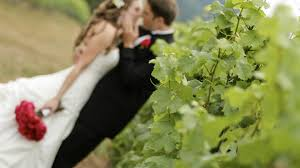 Wedding Wedding Venues Visit Lodi