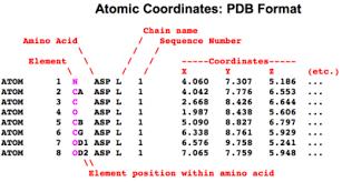 format file atom atomic coordinate file proteopedia life in 3d