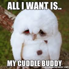 Cuddle Buddy Meme - hilarious cuddle memes and images for couple cuddle memes