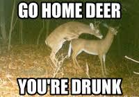 Funny Deer Hunting Memes - inspirational funny deer hunting memes deer meme memes kayak