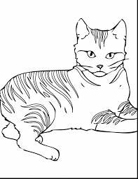 awesome cute animal coloring pages with warrior cat coloring pages