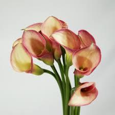 Flowers Paducah Ky - riverside florist