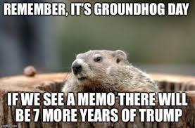Groundhog Meme - meme of the day history infographics