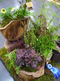 northwest native plants a winning container combination plant something oregon