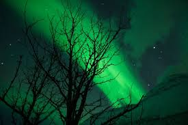 chasing northern lights tripfable
