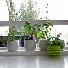 lawn garden fabulous stainless steel kitchen appliances minimalist
