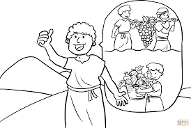 the grapes of canaan coloring page free printable coloring pages