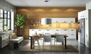 cuisine lineaire cuisine lineaire ikea beau cuisine lineaire design steel open plan