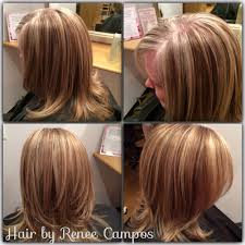 Colours For Highlighting Hair Grey Blending With A Highlight Lowlight Hair Pinterest Brown