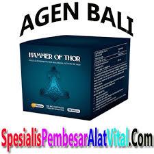 agen obat hammer of thor asli di bali 085200375000