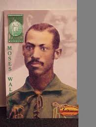 free the negro leagues moses walker baseball card by ted williams