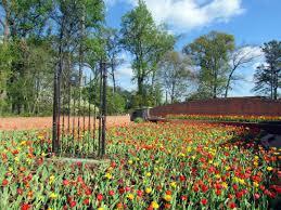 home decor atlanta ga creative botanical gardens in atlanta ga home interior design