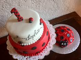 ladybug birthday cake bug white black 1st birthday smash cake s cakes
