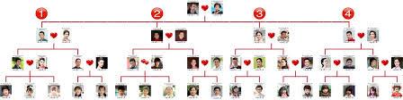 bigfamilies manual family tree network