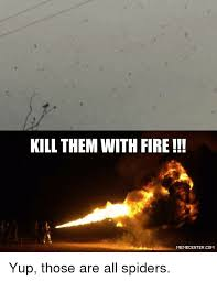 Spider Fire Alarm Meme - kill them with fire memecentercom yup those are all spiders